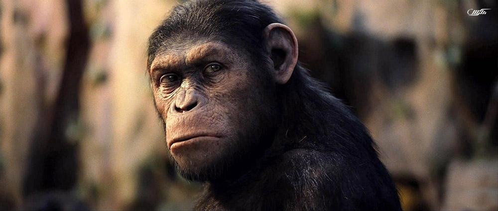 دانلود فیلم ظهور سیاره میمون ها 2011 با دوبله فارسی