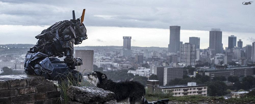 دانلود فیلم چپی 2015 با دوبله فارسی