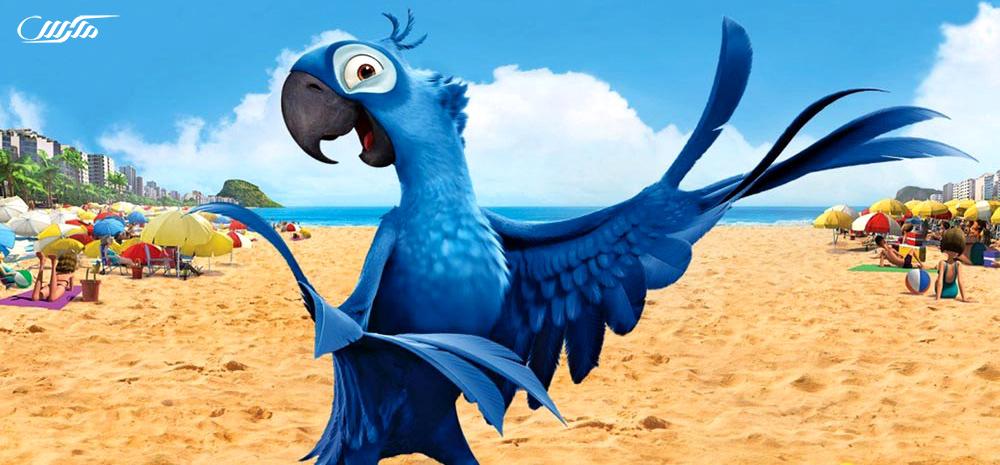 دانلود انیمیشن ریو