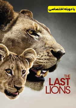دانلود مستند آخرین شیر The Last Lions 2011