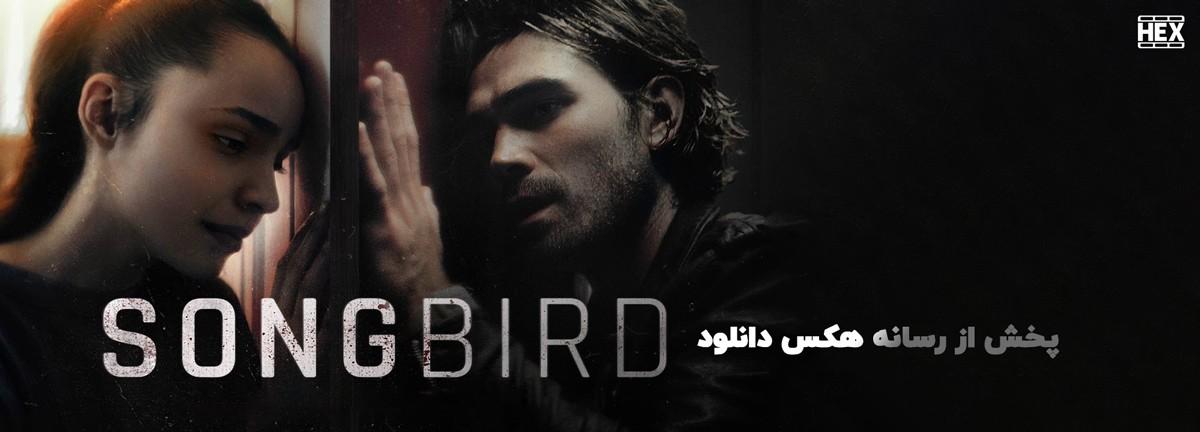 دانلود فیلم پرنده آوازخوان